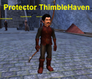 Protector ThimbleHaven