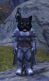 Cat mask picture