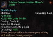 Pristine coarse leather minter's boots