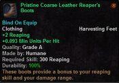 Pristine coarse leather reaper's boots