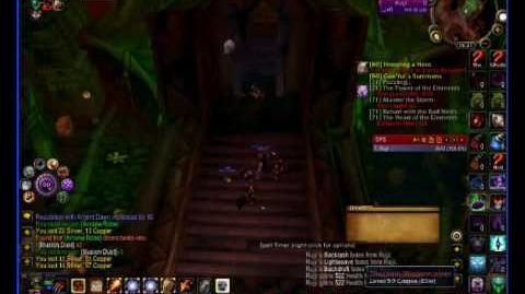 Destro Warlock farming the Baron Run