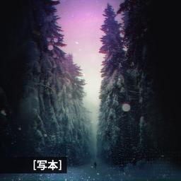 ShahonCodex-Cover