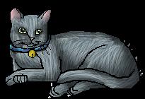 Jasmine.housecat