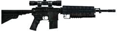 Assassin Rifle