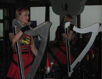 Harp twins concert