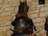 Седло рыцаря Равикса из Черторога