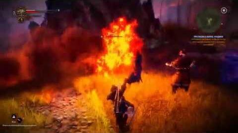 The witcher 2 Assassina of Kings - Прелюдия к войне Каэдвен