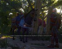 Заботливая лошадь