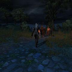 Встреча ведьмака с шайкой Калигора