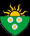 Герб нильфгаардской дол блатанны-(1)