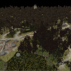 Модель Леса на болотах