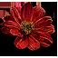 Цветок двоегротаВ3