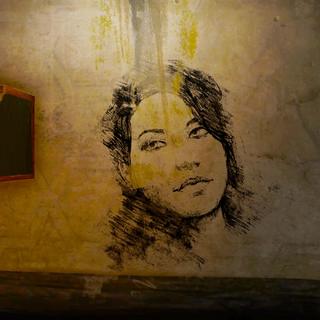 Портрет Сианны, нарисованный <a href=