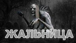 Битва с Жальницей - The Witcher 3