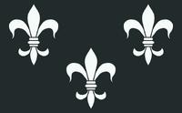 Флаг темерии вар2