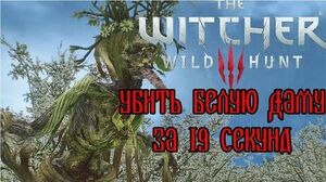 The Witcher 3- The White Lady in 19 seconds (WR)