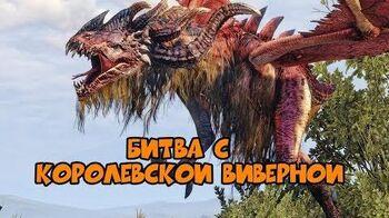 Битва с Королевской Виверной The Witcher III Призрак Тракта
