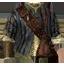 Кожаная куртка (Ведьмак 2)