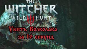 The Witcher 3- Wilkołak in 16,13 seconds (World record)