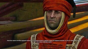 Встреча с Кардуином в игре Ведьмак 3