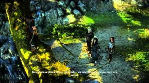 Ведьмак 2 Глава I, задание «Скверный прием»