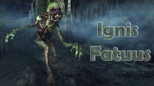 Ignis Fatuus - The Witcher III-0
