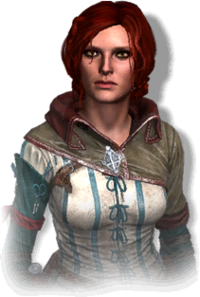 Tw2 journal Triss