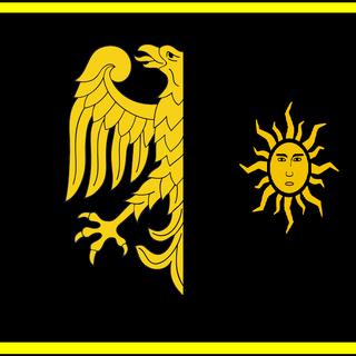 Альтернативное знамя дивизии