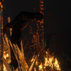 Сожженая Фелиция и Ляшарель