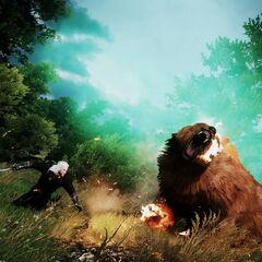 Поединок с медведем в «Ведьмак 3: Дикая Охота»