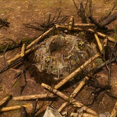Гнездо <a href=