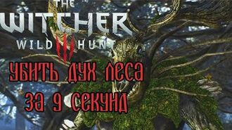 The Witcher 3- Woodland Spirit in 9 seconds (WR)