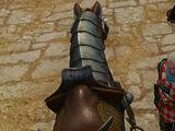 Седло странствующего рыцаря