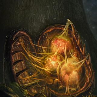 Яйца эндриаги, <i>Гвинт: Ведьмак. Карточная игра</i>