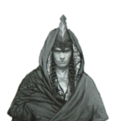 Эльфийский воин, не Скоя'таэль