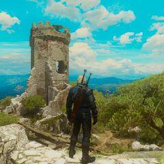 Вид на башню Тесхам Мутна с юго-запада