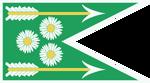 Flaga Dol Blathanna