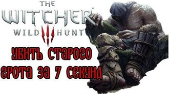 The Witcher 3- Old Speartip in 7 seconds (WR)
