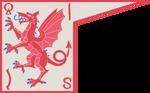 Флаг ВолГосСаскии1