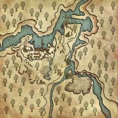 Карта леса и города