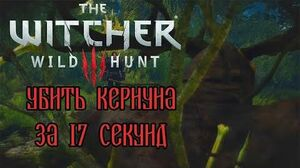 The Witcher 3- Kernun in 17 seconds (WR)