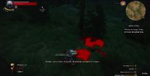 Кровавый след от Ганны