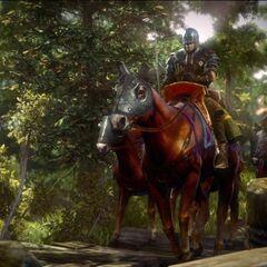 Нильфгаардская конница в концовке Ведьмака 2