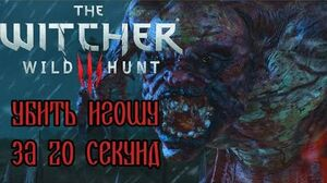 The Witcher 3- Botchling in 20 seconds (WR)