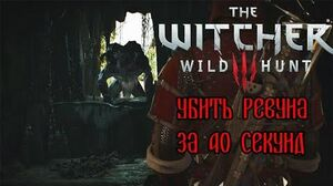 The Witcher 3- Howler in 40 seconds (WR)