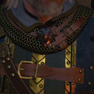 Медальон школы Грифона, Ведьмак 3: Дикая Охота