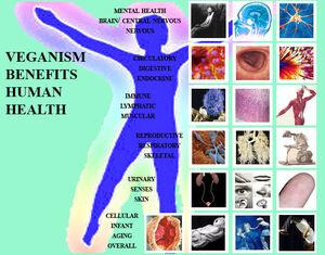 Human-HealthWeb