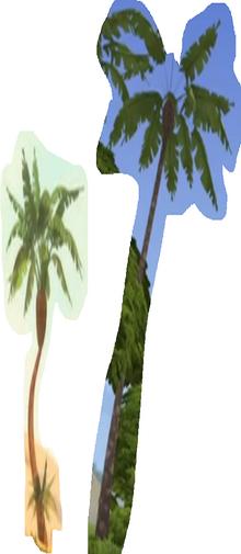 Three Palm Tree