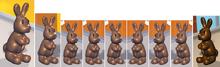 Nine Chocolate Bunnie As Himself