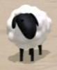 Sheep As Himself